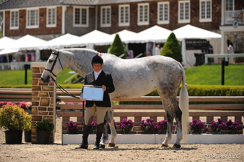 Ann Misenheimer and Cornerstone in their Grand Adult Amateur Hunter Champion presentation; photo © The Book