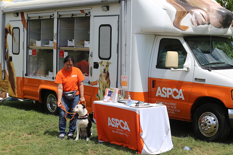 The ASPCA at Old Salem Farm; photo © Jump Media