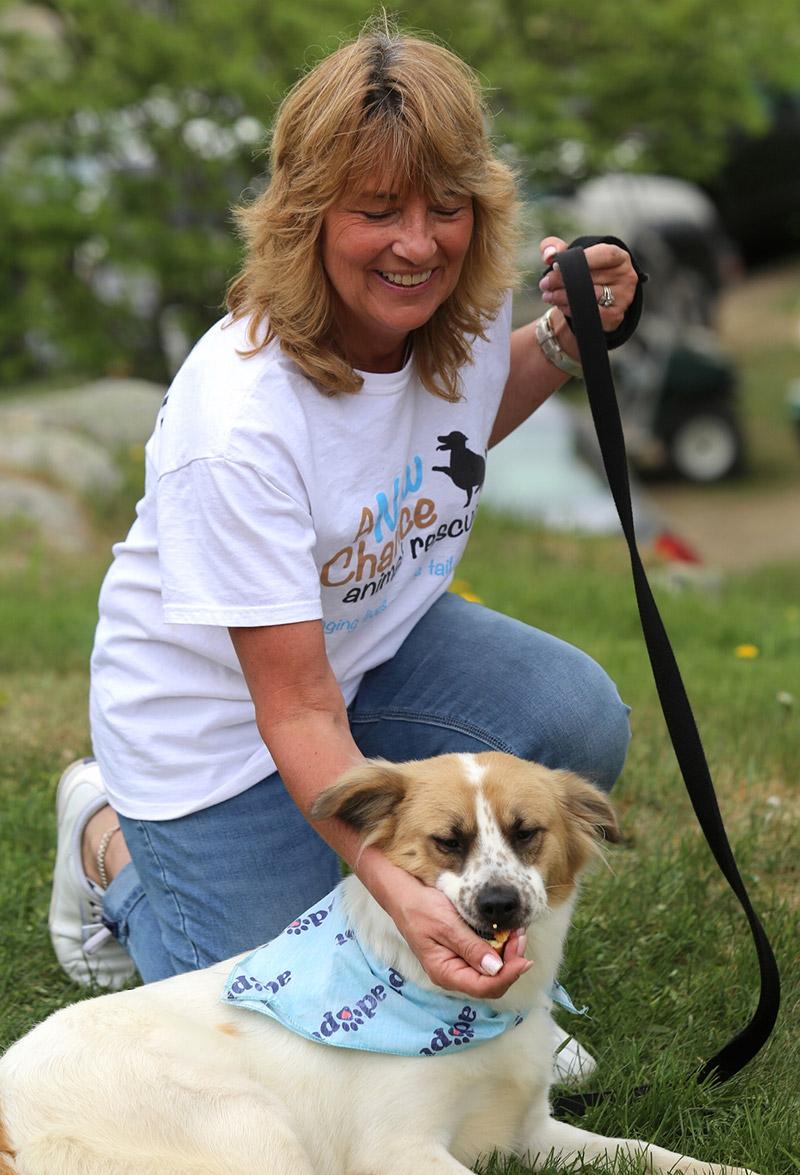 A New Chance Dog Rescue at Old Salem Farm; photo ©Jump Media