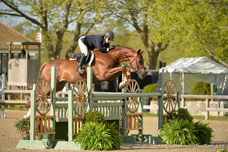 Louise Serio and Rock Harbor jumped to a champion ribbon in the High Performance Hunter Division, which won them Grand Hunter Champion honors during the 2017 Old Salem Farm Spring Horse Shows at Old Salem Farm in North Salem, NY; photo © The Book