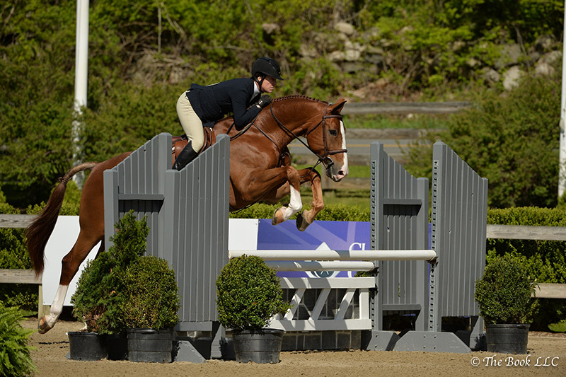 Mahalo and Katie Robinson jumped to a championship ribbon in the Adult Amateur Hunter 50 and Over Division, which won them grand champion honors as well during the 2017 Old Salem Farm Spring Horse Shows at Old Salem Farm in North Salem, NY; photo © The Book