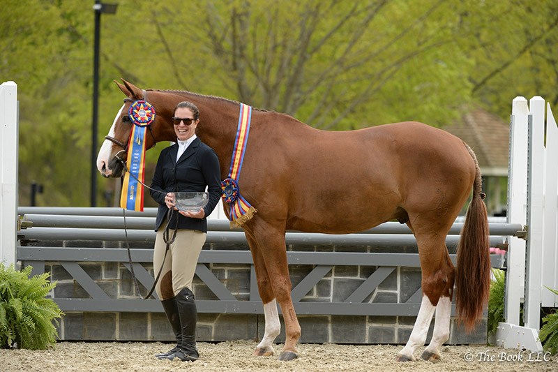 Mahalo, ridden by Katie Robinson, was named Grand Adult Amateur Hunter Champion on Thursday, May 11, during the 2017 Old Salem Farm Spring Horse Shows at Old Salem Farm in North Salem, NY; photo © The Book