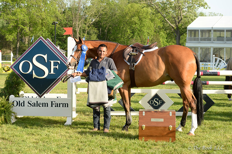 Heritage Farm groom Humberto Valadez won the hunter section of the $5,000 Grooms' Class, presented by Old Salem Farm, with Fetching, owned by Lexi Maounis; photo © The Book