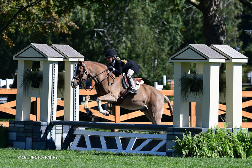 Emilia Richard topped the Pony Hunter Derby riding Fairytales during the Old Salem Farm Fall Classic at Old Salem Farm in North Salem, NY. Photo by SEL Photography